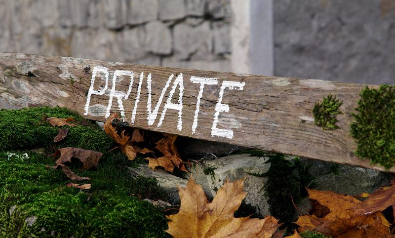 Privaatne P